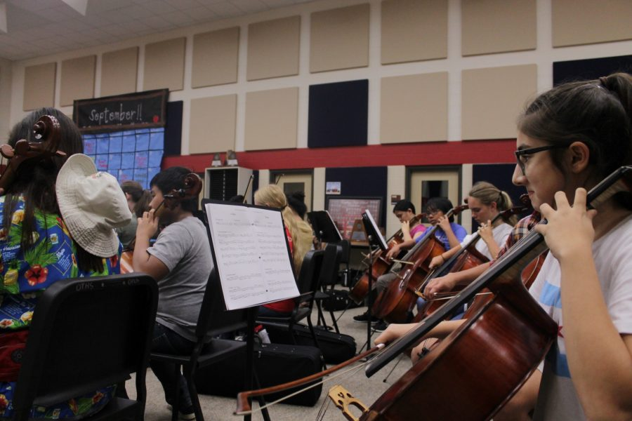 Orchestra Program Places High in Honors