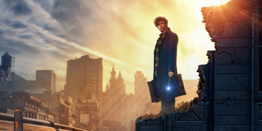 A Return to the Fantastic Wizarding World - Fantastic Beasts and Where To Find Them: Movie Review