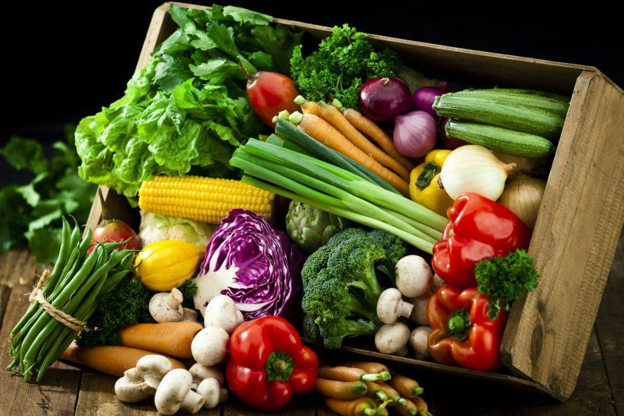 Roten Explores the Vegan Diet