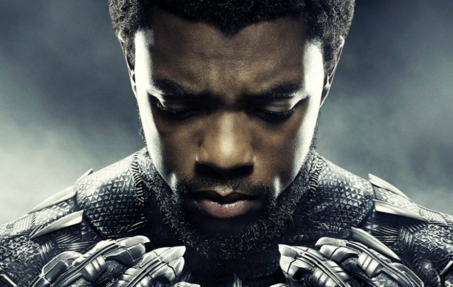 Black Panther Movie Review: A Nation Born for Diversity