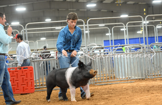 FFA Wraps Up the Competition