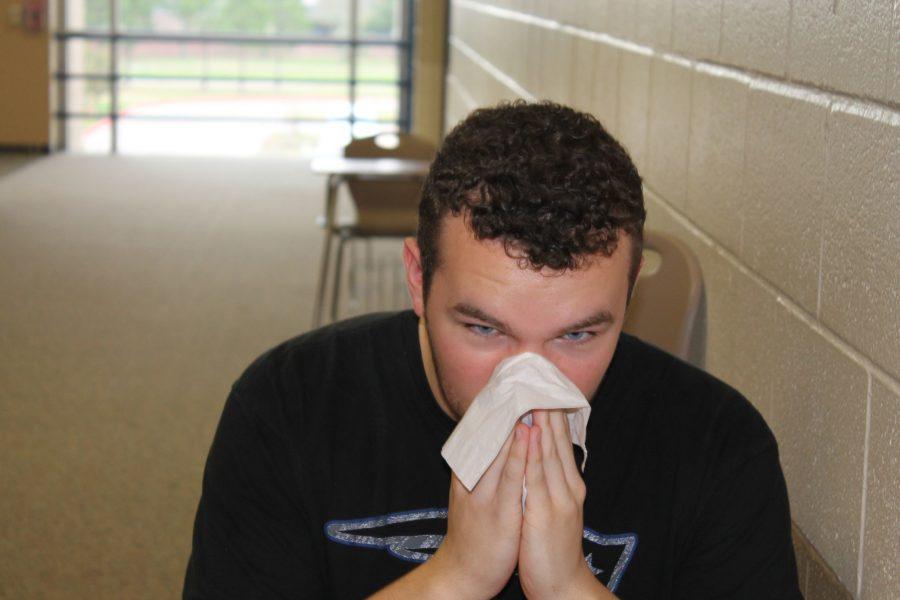 Sneeze+into+Allergy+Season