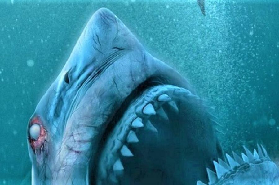 47 Meters Down: Uncaged Shocks Horror Fanatics