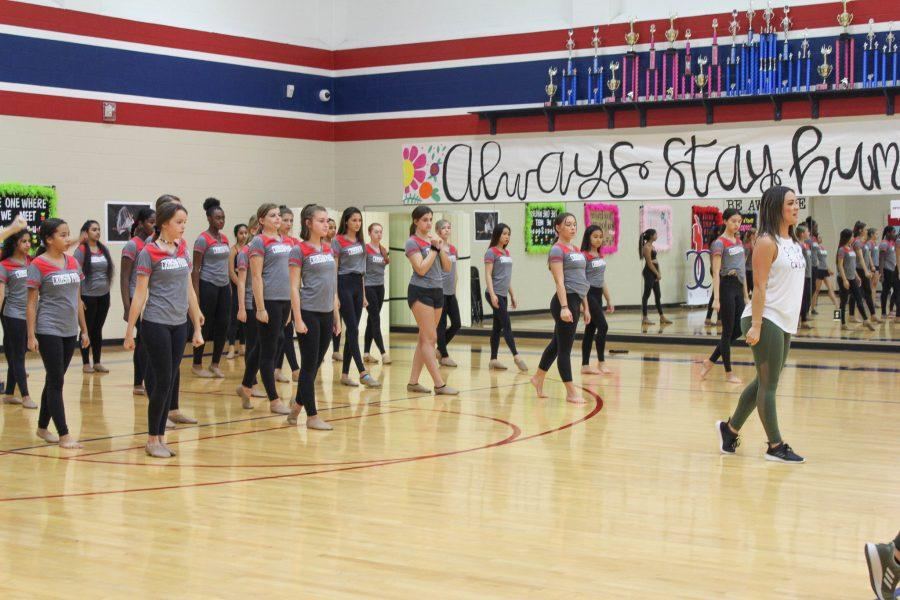 Cavalettes and Cheer Create New Teams