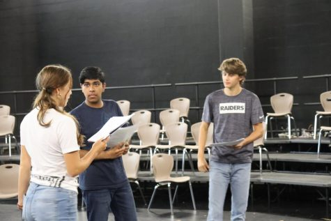 Theatre Company's Upcoming Productions